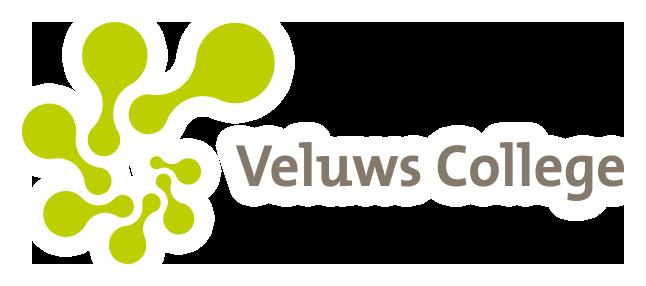 Veluws College